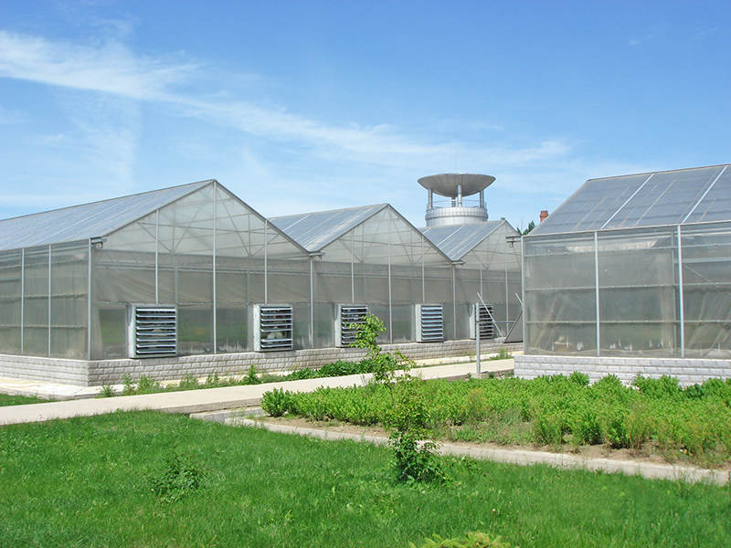 Double wall Polycarbonate for greenhouse