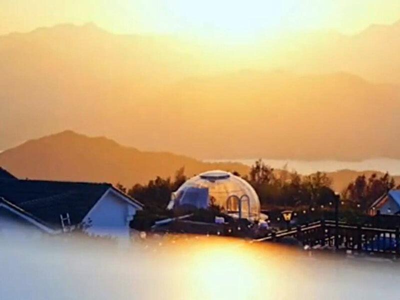 Bubble tent at Tea Garden